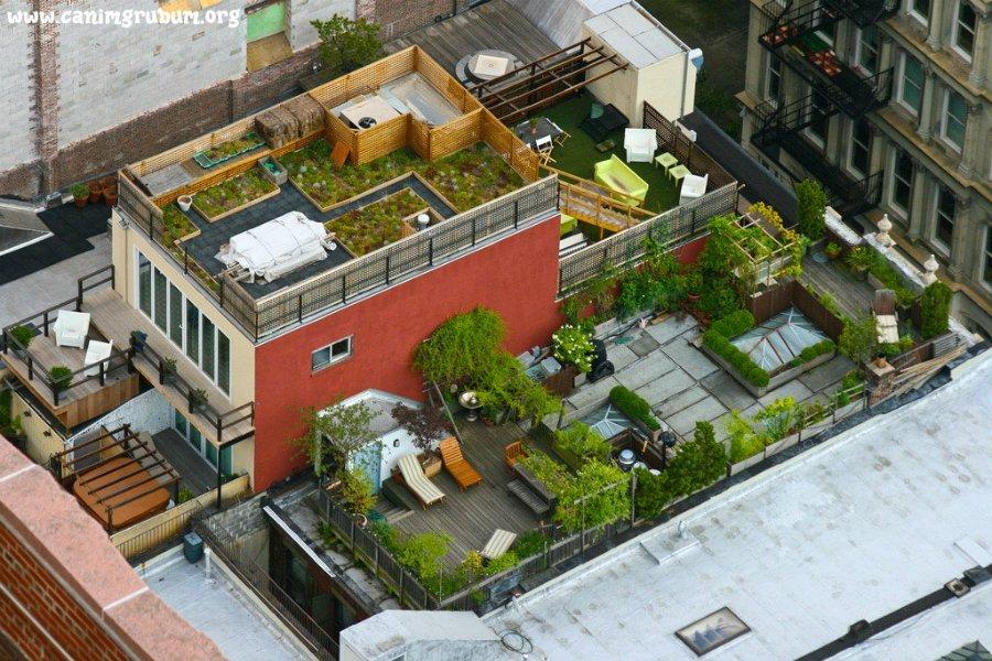 4102 Сады на крышах (Часть 2)