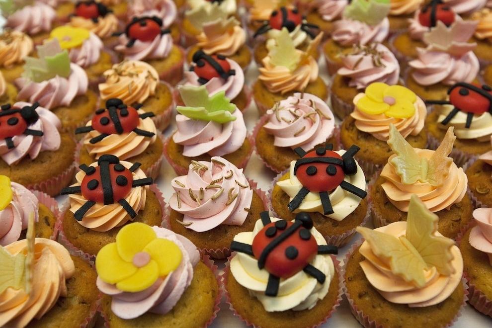 4153 Пирожные из насекомых