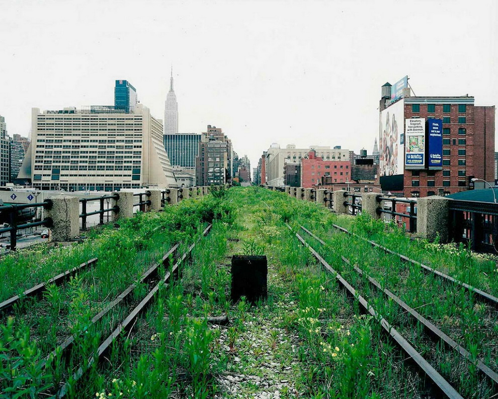4159 Хай Лайн   зеленый оазис в Нью Йорке