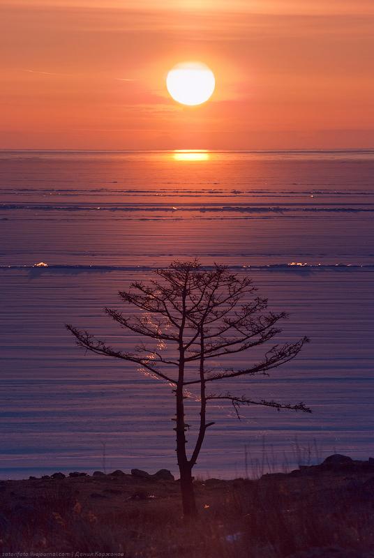 4810 Тонкие струны Байкала или 400 км на коньках