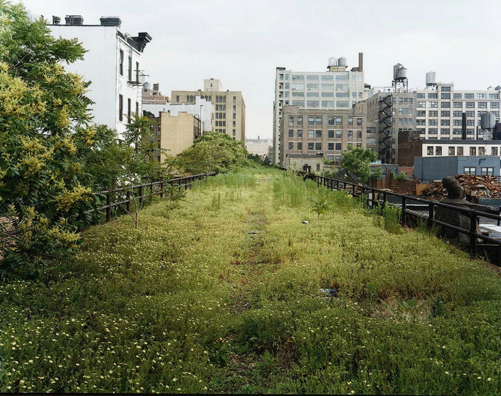 5144 Хай Лайн   зеленый оазис в Нью Йорке