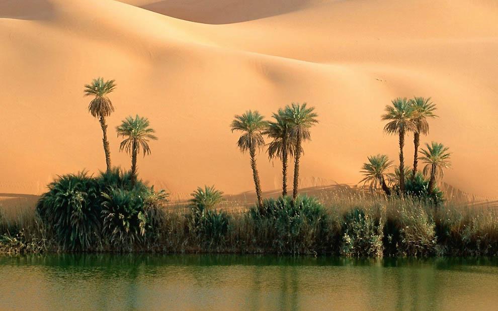 5183 15 fotos asombrosas del desierto
