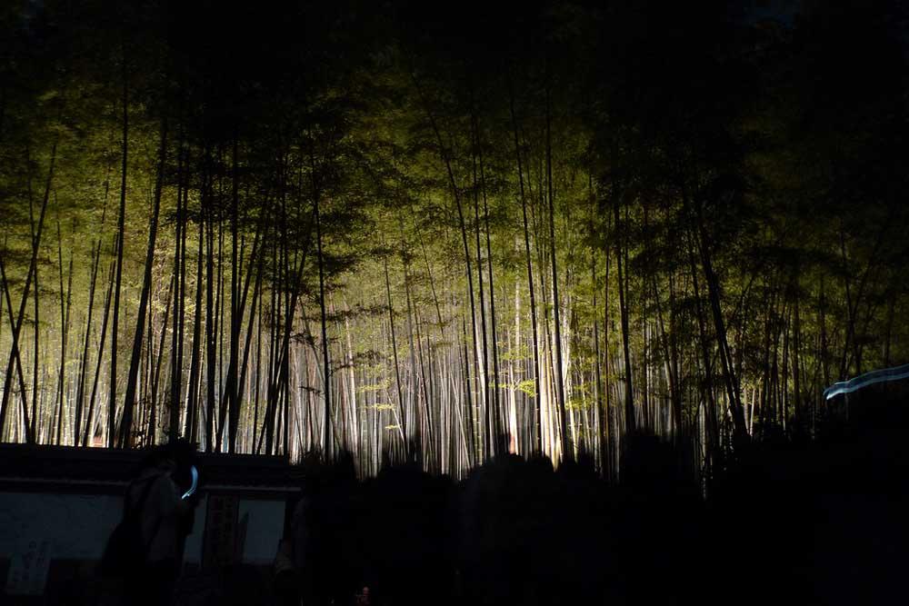 5337658400 60e1e39367 b Бамбуковый коридор у подножья горы в Киото