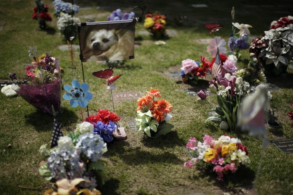 580 Кладбища домашних животных в США