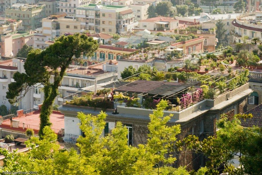 588 Сады на крышах (Часть 2)