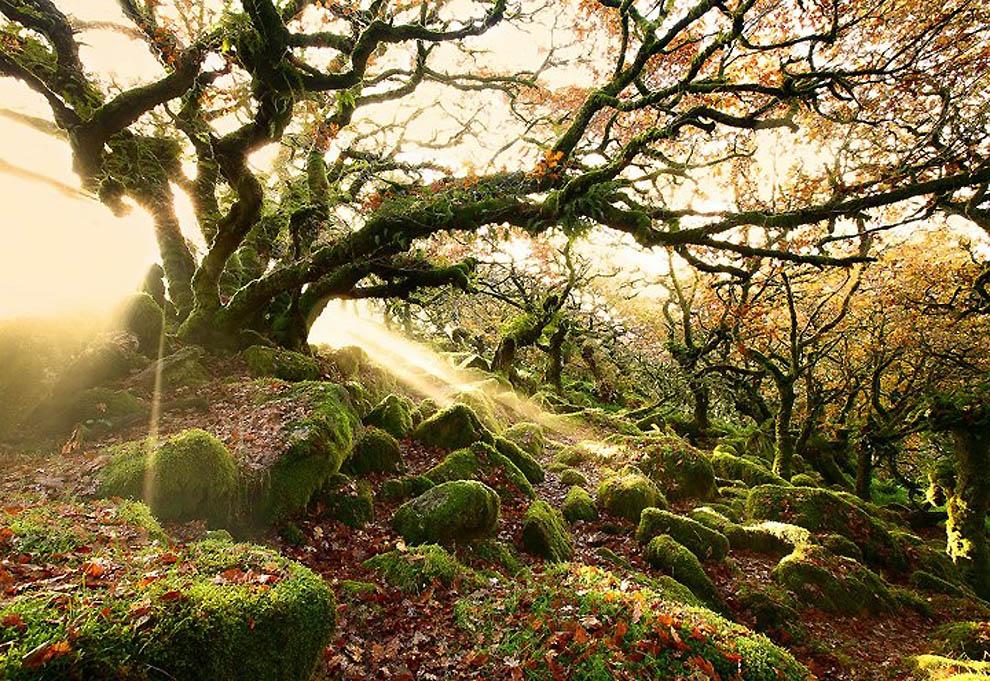 613 Удивительные фотографии природы от мастера пейзажного фото Джеймса Эпплтона