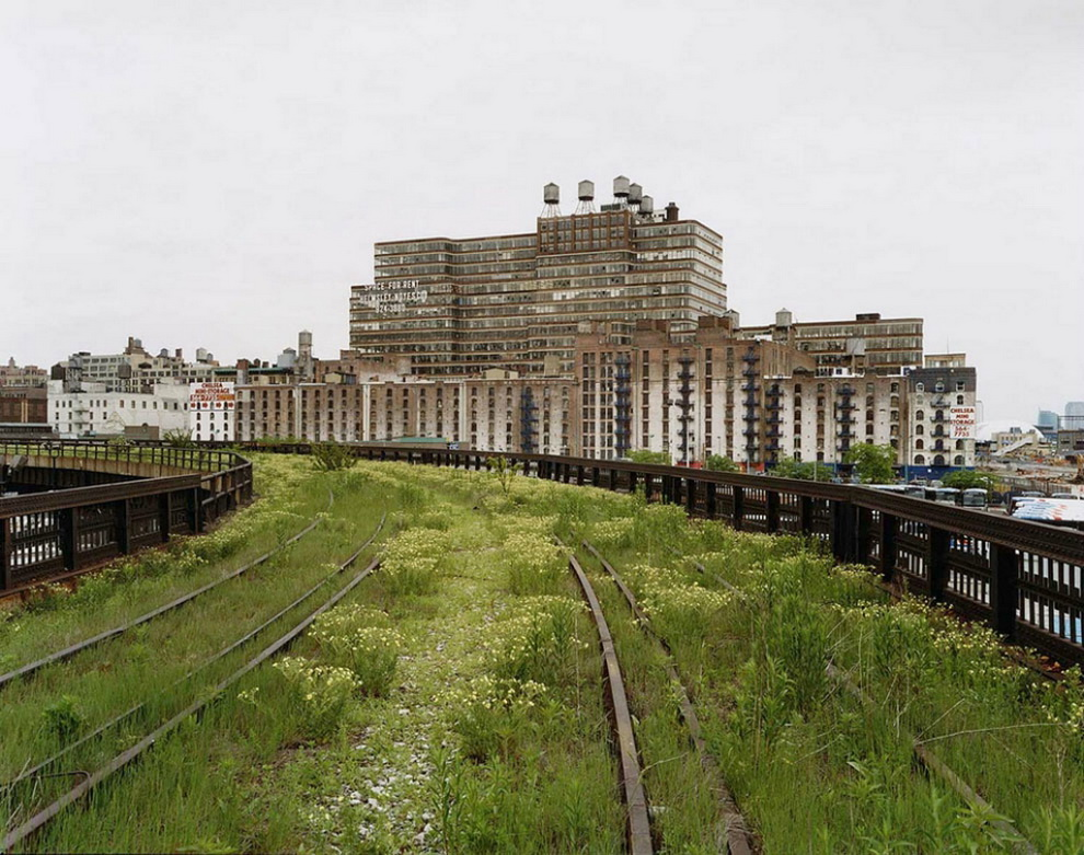 6132 Хай Лайн   зеленый оазис в Нью Йорке