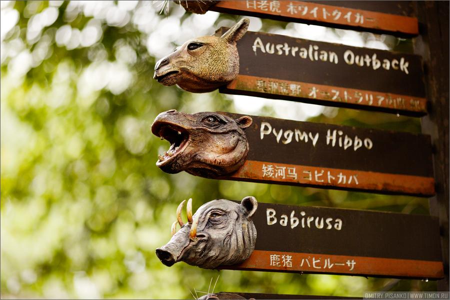 7143 Самый открытый зоопарк мира