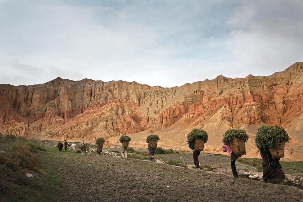 8111 Монтанг: бывшее королевство Ло в Непале