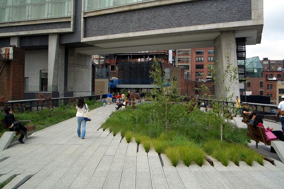 8118 Хай Лайн   зеленый оазис в Нью Йорке
