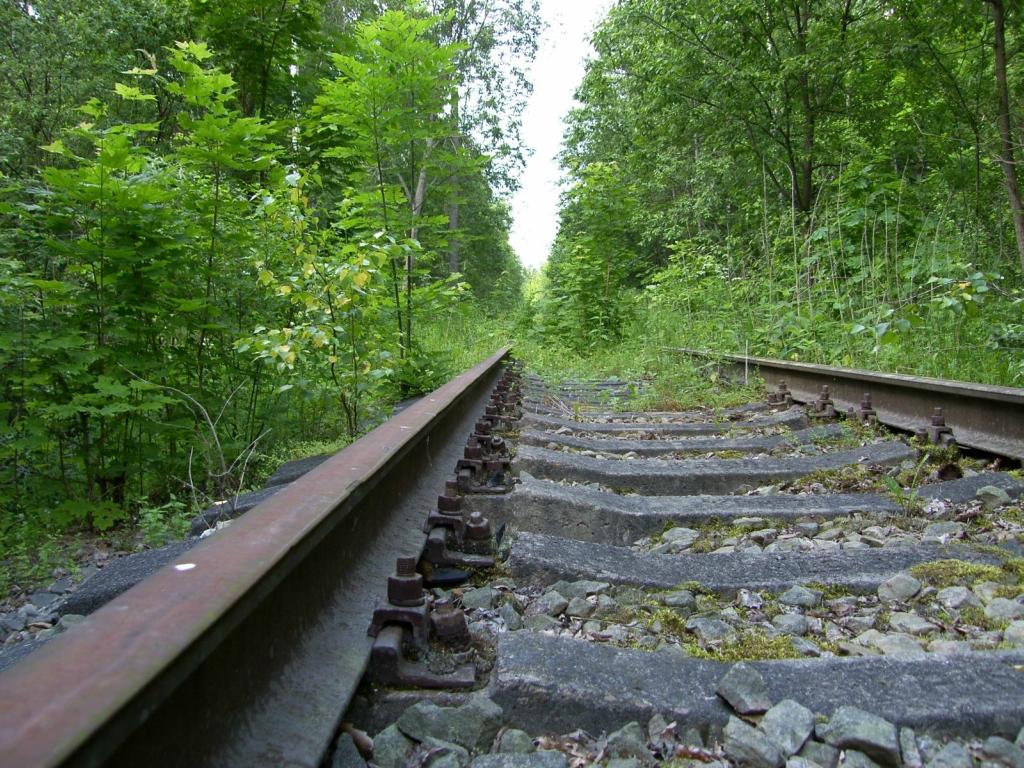 8153 Заброшенные железные дороги