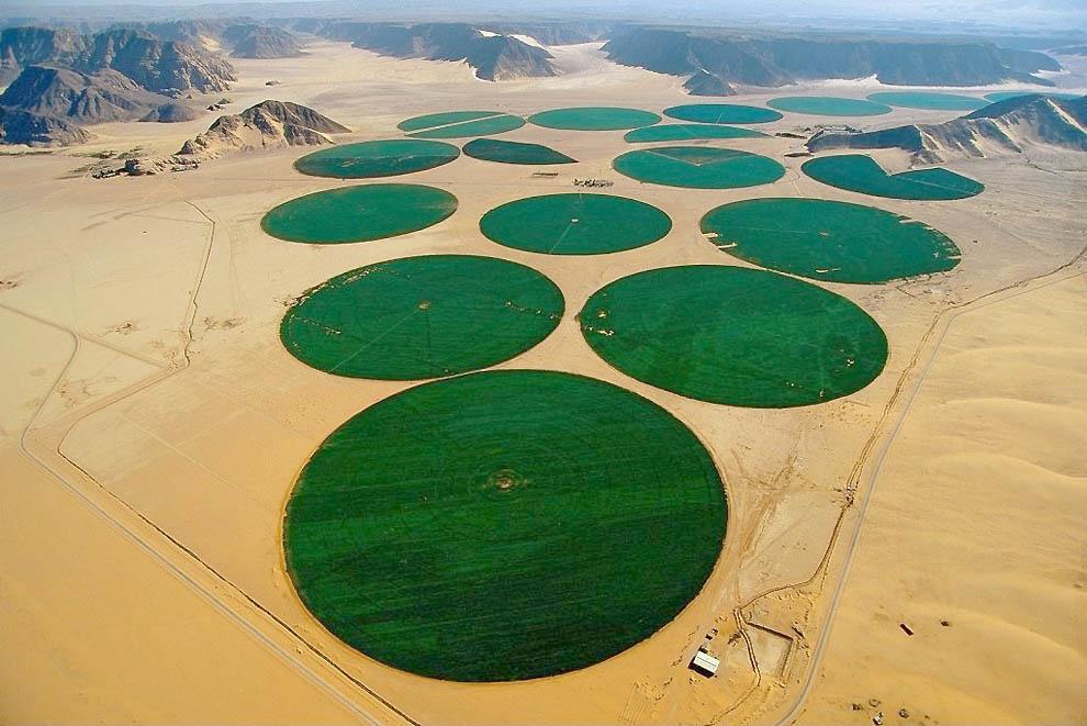 8154 15 fotos asombrosas del desierto
