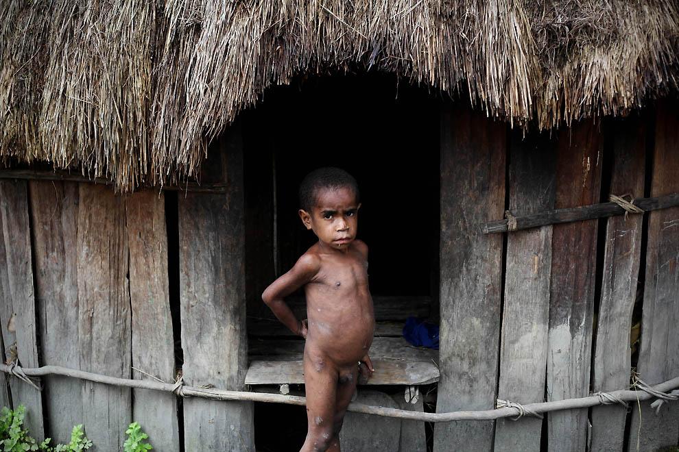 895 Племя Дани из Западной Папуа