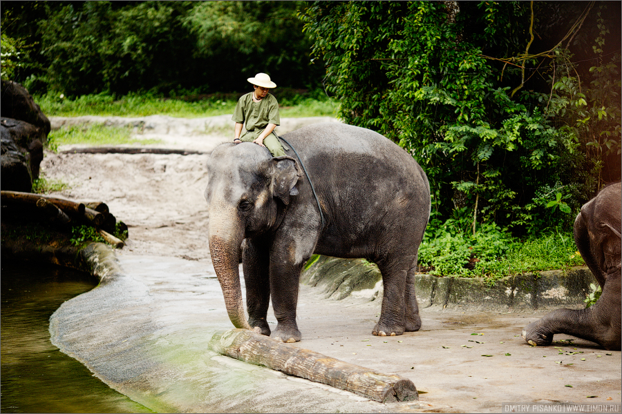 9133 Самый открытый зоопарк мира