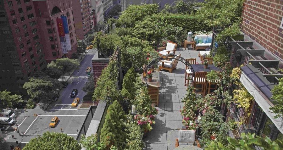 967 Сады на крышах (Часть 2)