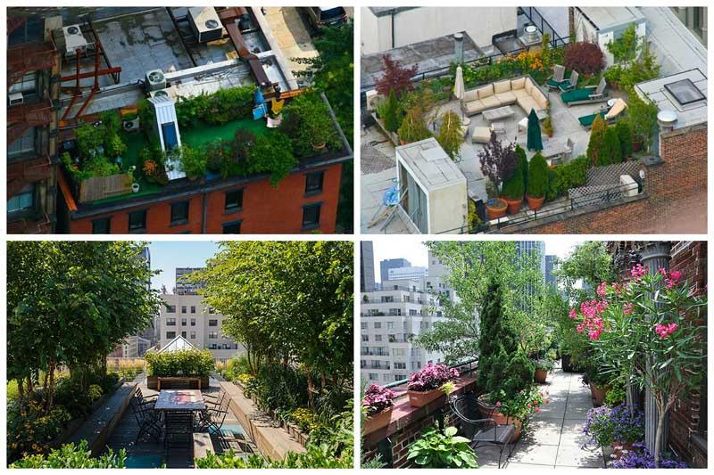 Сады на крышах (Часть 2)