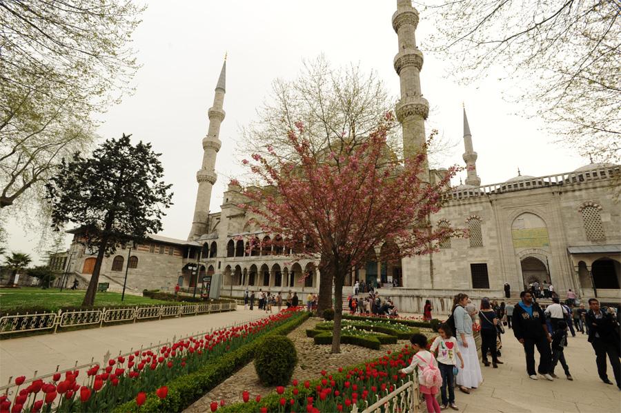 DSC 6168 Четыре волшебных дня в Стамбуле