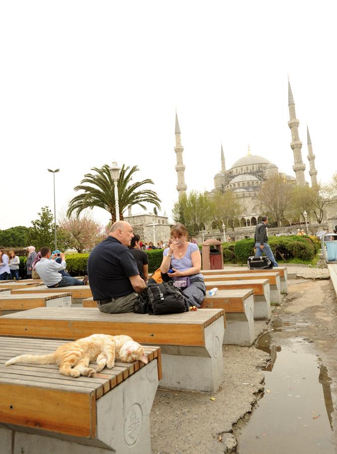 DSC 6175 Четыре волшебных дня в Стамбуле