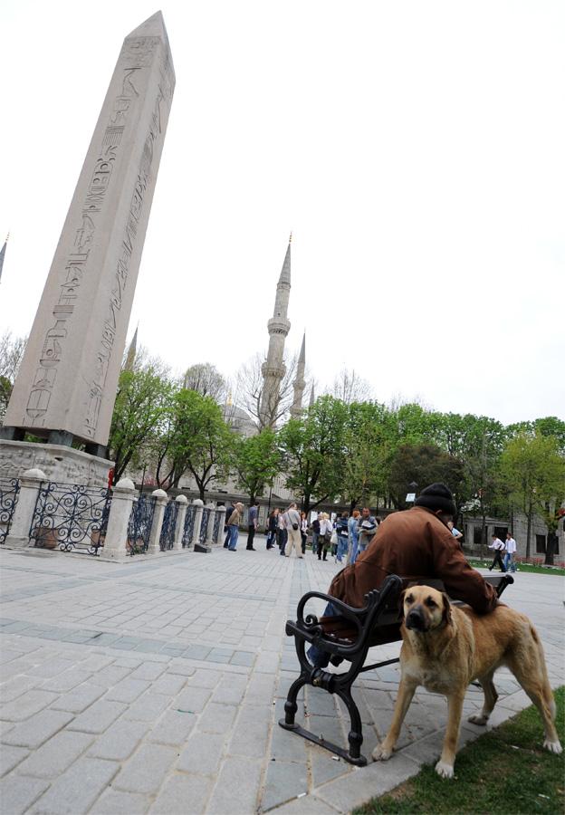 DSC 6294 Четыре волшебных дня в Стамбуле