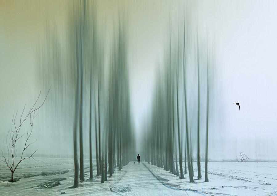 abstrakt Абстрактные фотографии Джоша Адамски