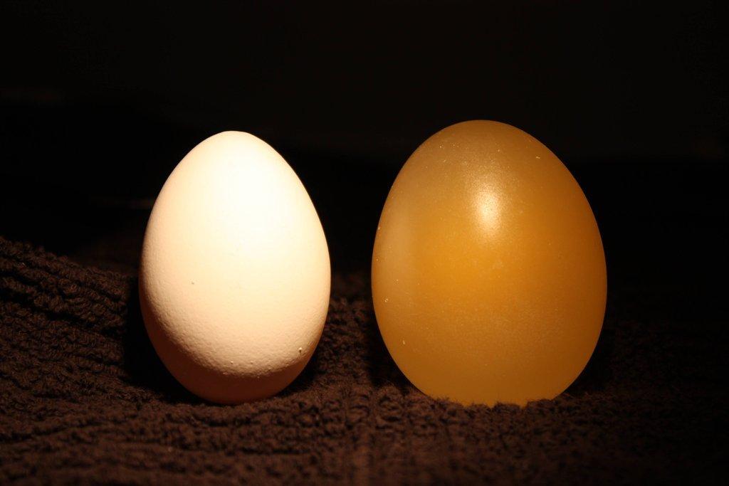 egg10 Эксперимент с яйцом и уксусом