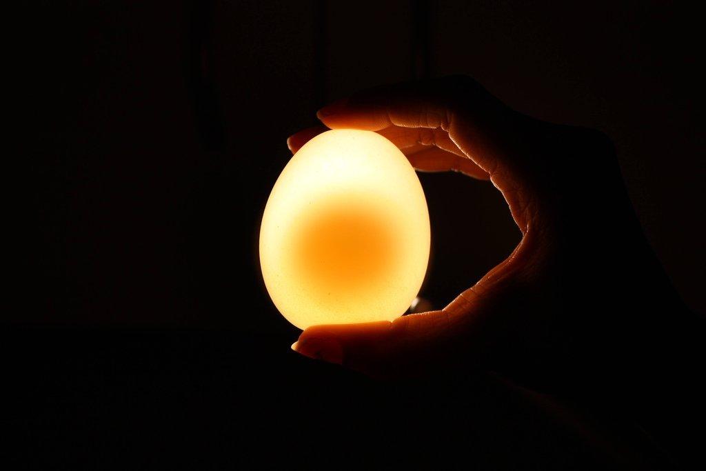 egg11 Эксперимент с яйцом и уксусом