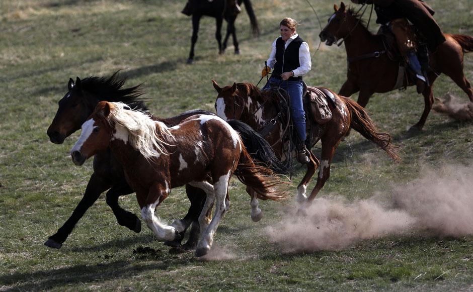 07Montanamontana horse017 Последние ковбои