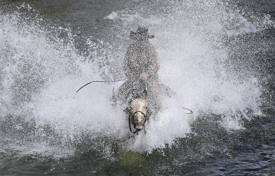 09Montanamontana horses 17905 ju Последние ковбои