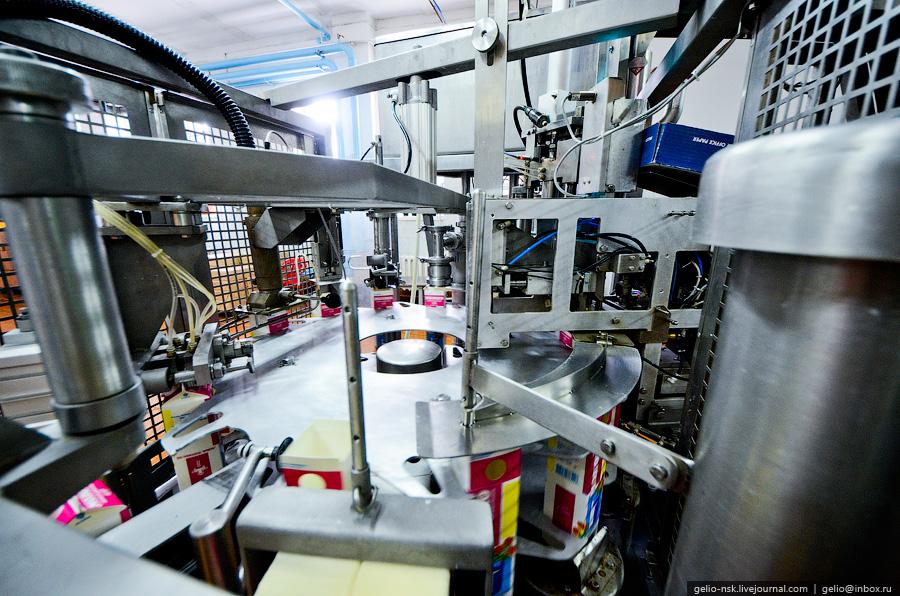 1076 Производство молока: Племзавод Ирмень в Новосибирской области