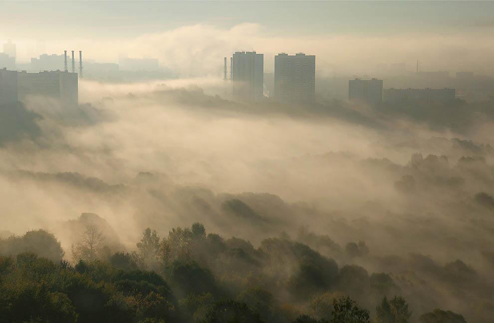 11170 Города окутанные туманом