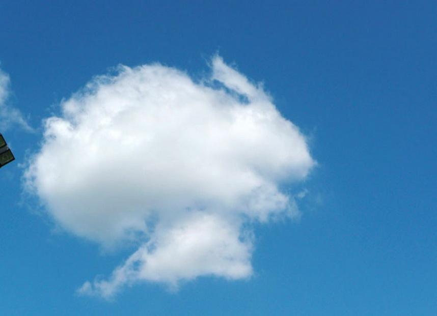 11174 Облака, белогривые лошадки...