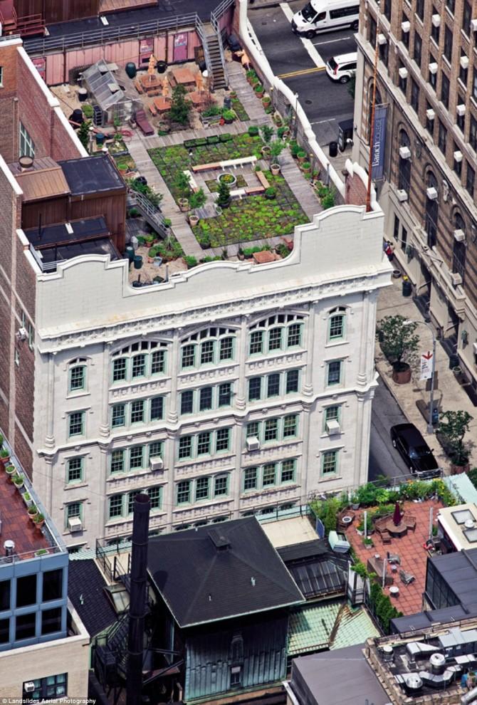 1163 670x990 Крыши Нью Йорка, какими вы их еще не видели