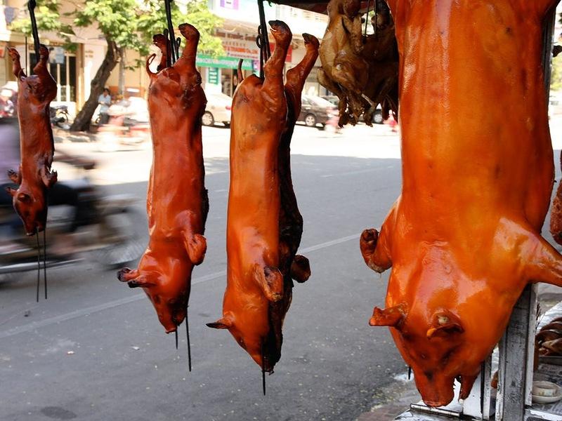 12169 Популярная уличная еда в разных странах