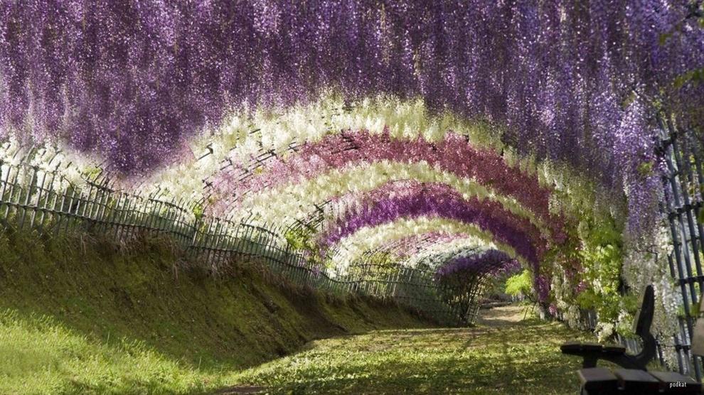 1290 10 мест неземной красоты, которые действительно существуют на Земле