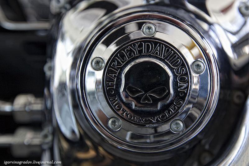 1321 Harley Davidson