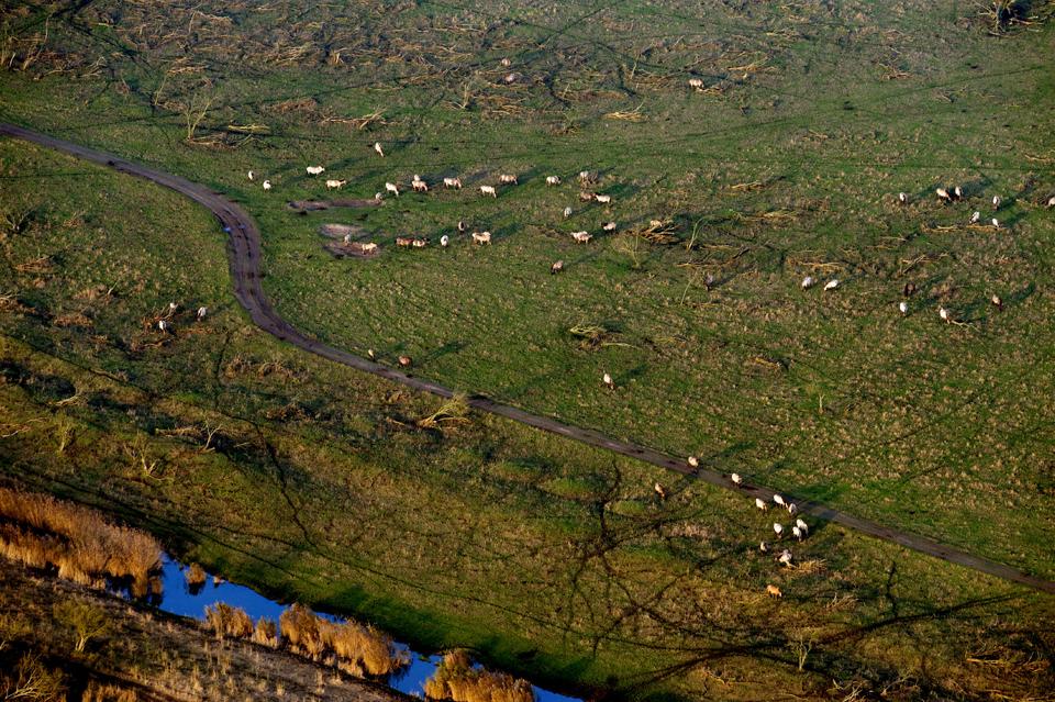 1405 Фотографии Нидерландов с воздуха