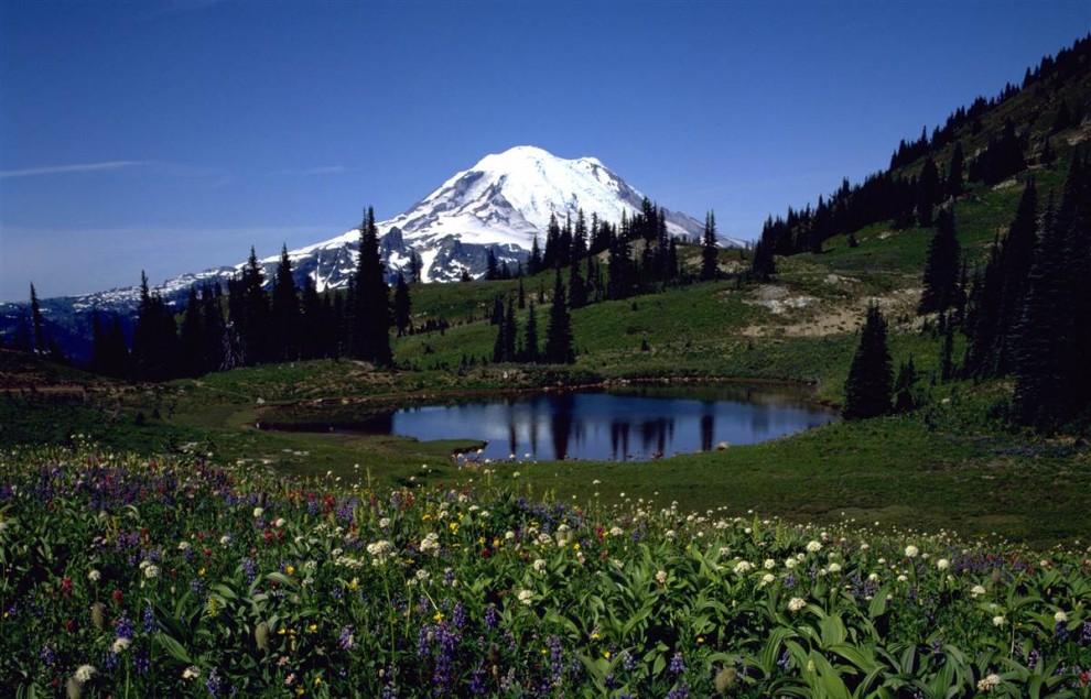 1422 Национальные парки США