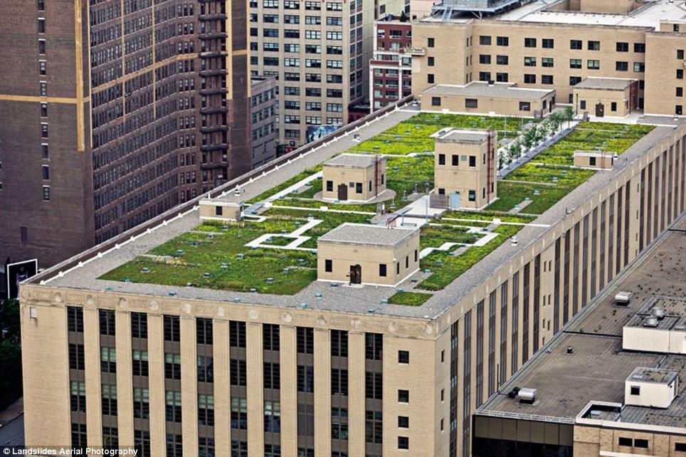 1533 Крыши Нью Йорка, какими вы их еще не видели