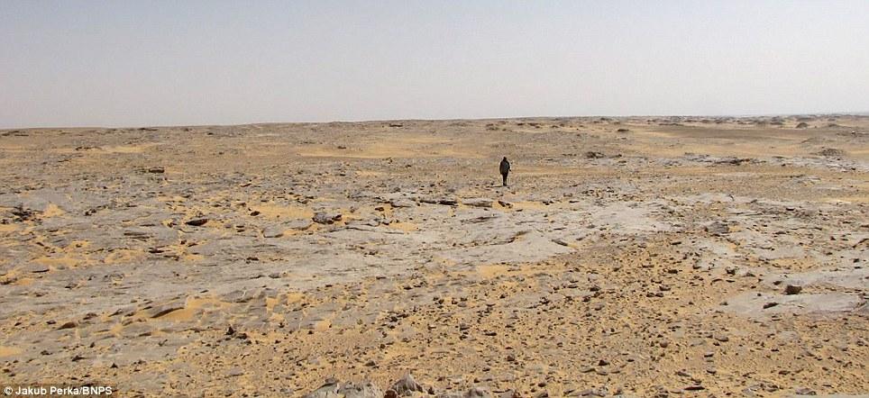1680 В Сахаре нашли самолет Королевских ВВС времен Второй мировой