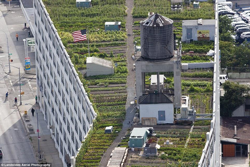 2129 Крыши Нью Йорка, какими вы их еще не видели
