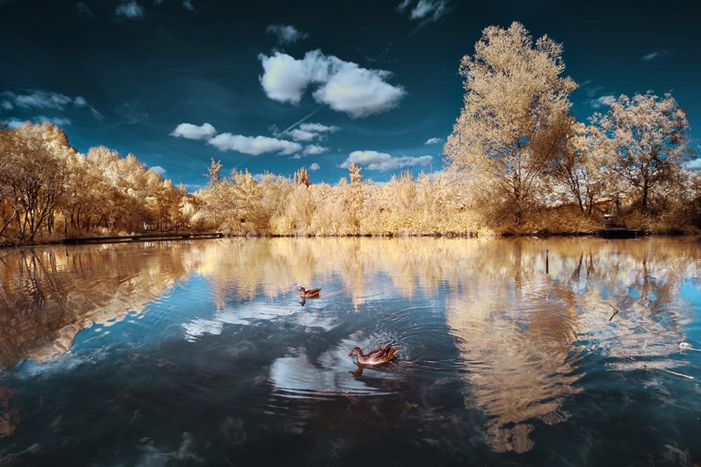 2188 Удивительные работы фотографа самоучки Давида Кешкеряна