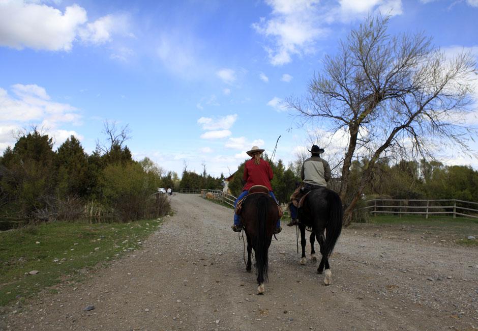 24Montanamontana horse062 Последние ковбои