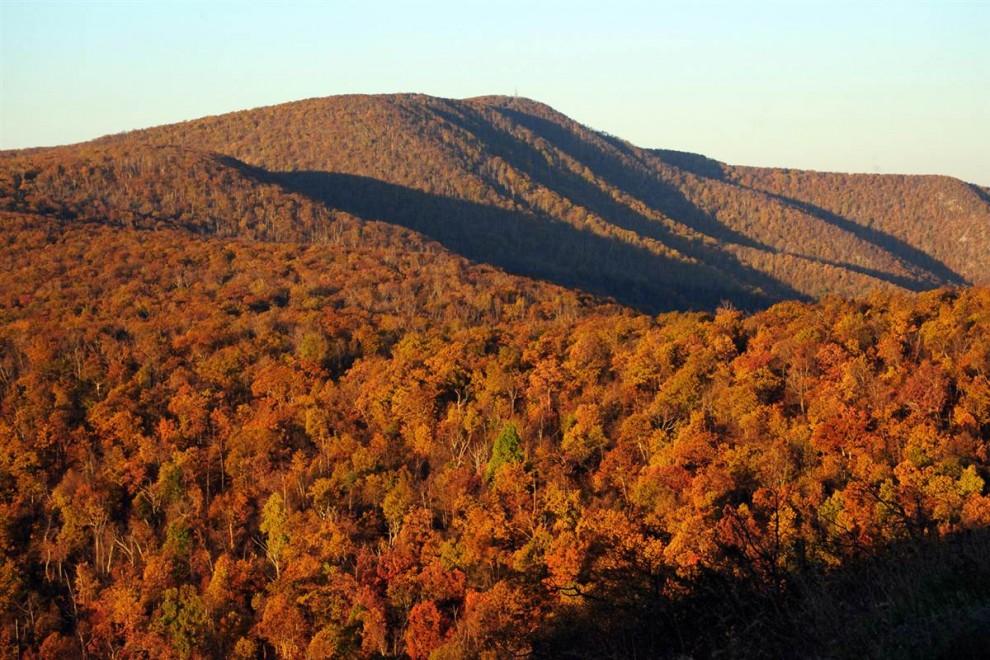 2513 Национальные парки США