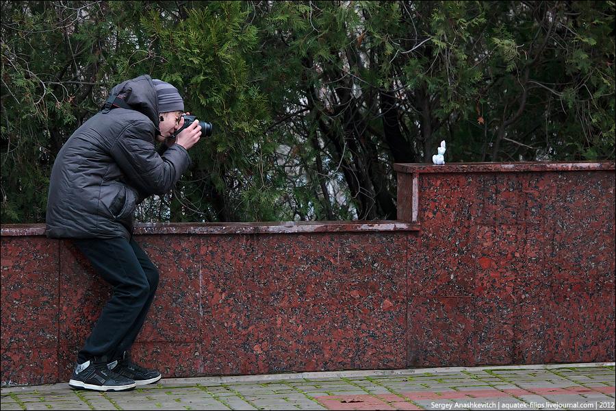 2528 Фотографии фотографов или как получаются фотоснимки