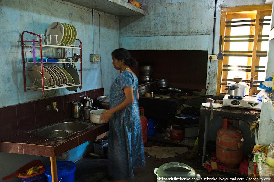 2617 Индийская кухня глазами иностранца