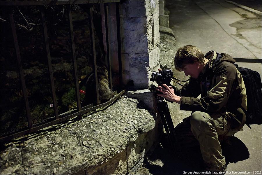 2624 Фотографии фотографов или как получаются фотоснимки