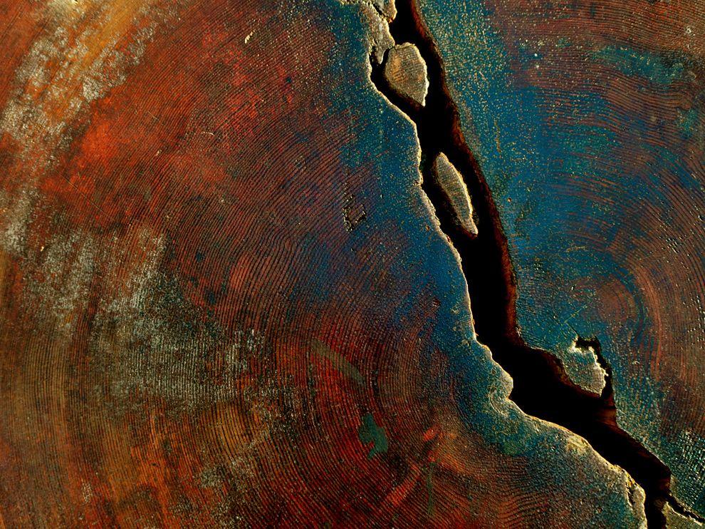 266 Обои для рабочего стола от National Geographic за апрель 2012