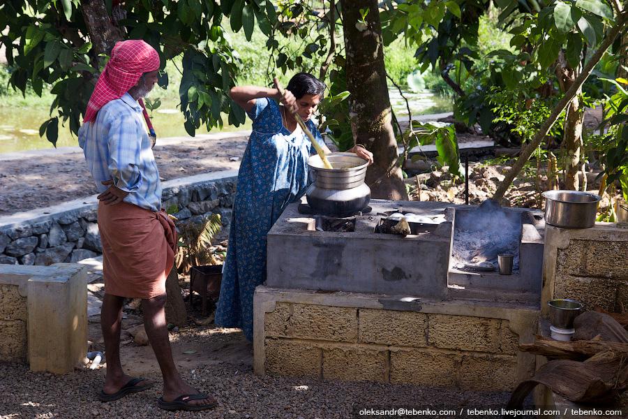 2813 Индийская кухня глазами иностранца