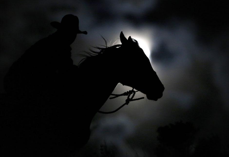30Montanamontana horse071 Последние ковбои
