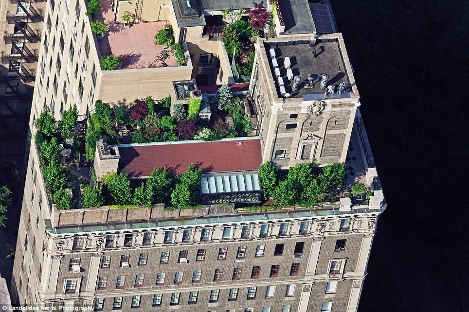 459 Крыши Нью Йорка, какими вы их еще не видели